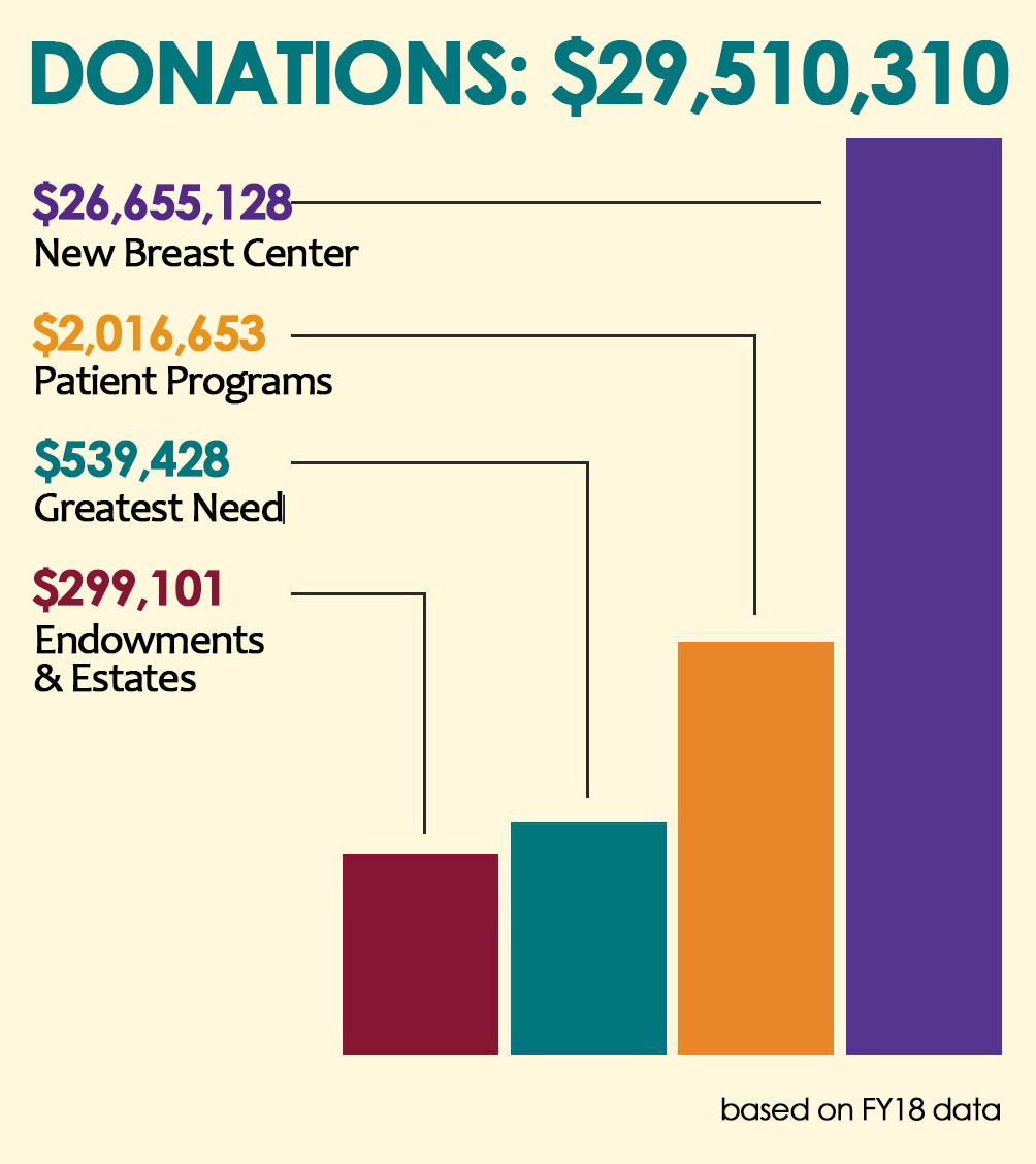 FY18 Donor Graph