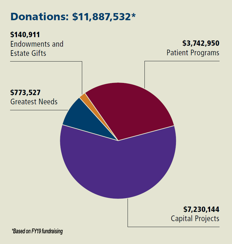 FY19 Donor Graph