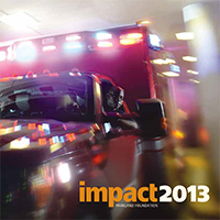 2013 Impact Report Cover
